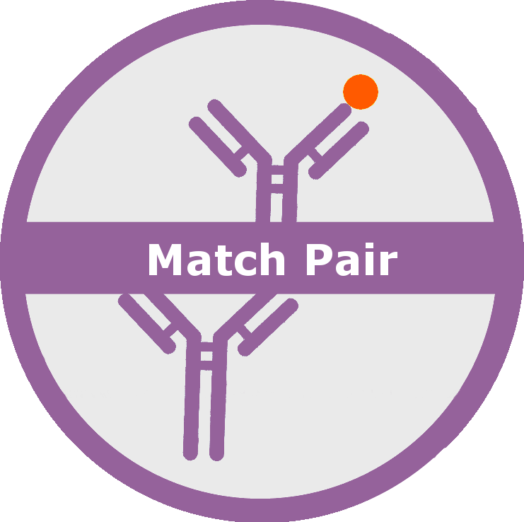 logo_match pair