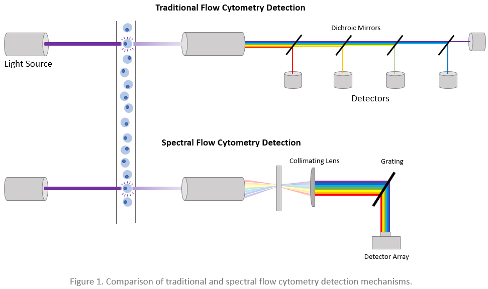 Newsletter: Dyes for Spectral Analyzers
