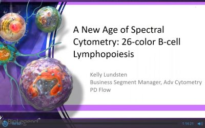 A New Age of Spectral Cytometry: 26-color B-cell Lymphopoiesis