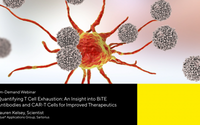 Quantifying T Cell Exhaustion: An Insight into BiTE Antibodies and CAR-T Cells for Improved Therapeutics